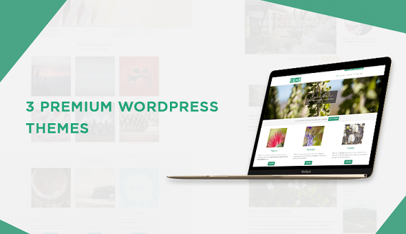 3-premium-wordpress-themes-1-png.46048