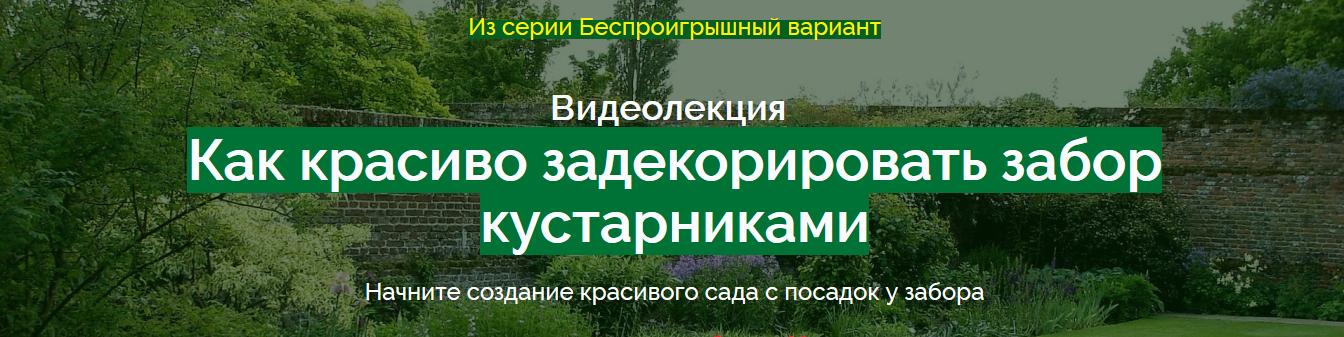 natalja_mjagkova-_kak_krasivo_zadekorirovat_zabor-png.80818