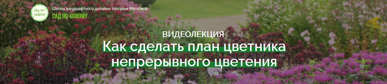 natalja_mjagkova-_kak_sdelat_plan_cvetnika_nepreryvnogo_cvetenija-png.80820